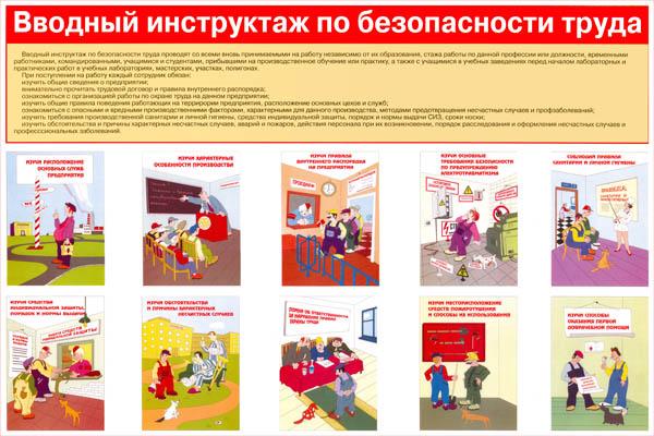 Инструкция По Проведению Первичного Инструктажа На Рабочем Месте В Медицине